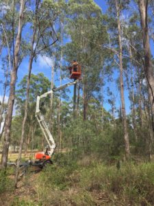 Overhead Cable Repair in Blackbutt